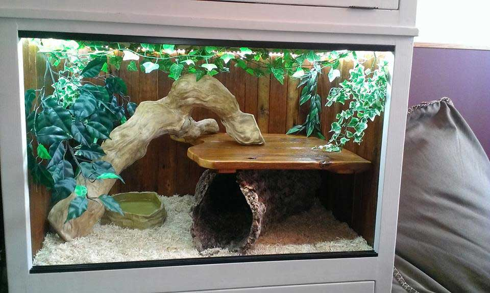 wood vivarium glass sliding doors snake lizard