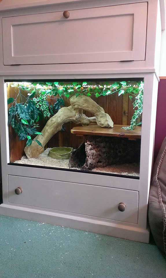 hand made snake reptile vivarium pine wooded New Romney